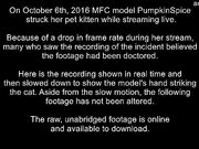 Cat Cruelty by Stormy / Pumpkinspice / KatTheCamgirl /